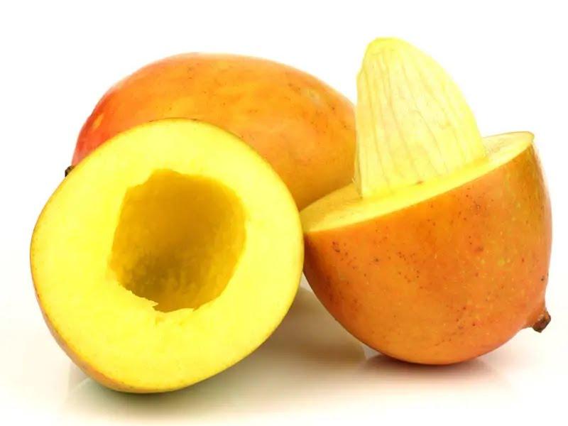 Mango Seeds Benefits